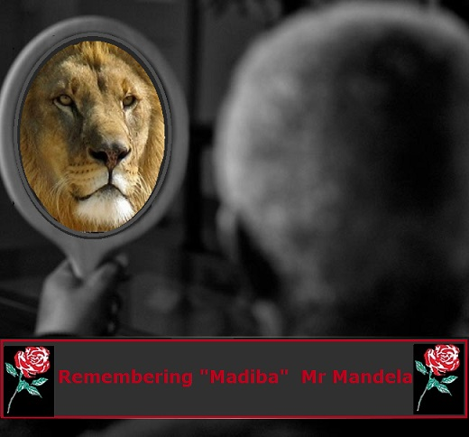Remebering Madeba Lion with no Evans